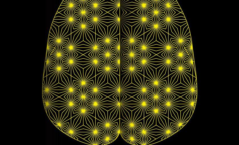 Мозъкът. Това си ти - Дейвид Игълман